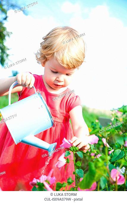 Female toddler watering pink flowers in flower field