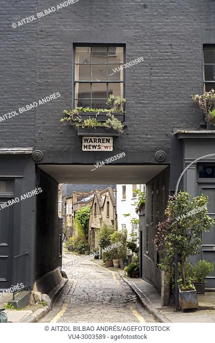 Warren Mews street, London. A small street near to warren street. Is beautifull to see places like this in te center of a big city