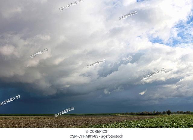 Approaching stormfront in Ellewoutsdijk, Netherlands