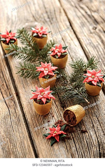 Christmas star flowers in flowerpots (confectionery)