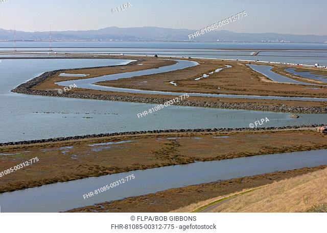 View of saltmarsh, pools and lagoons, Don Edwards San Francisco Bay National Wildlife Refuge, California, U S A