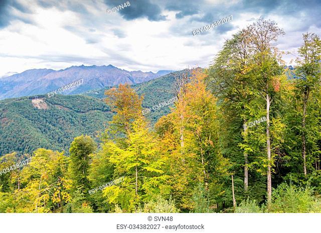 Colorful autumn landscape in the Caucasus mountains, near Sochi