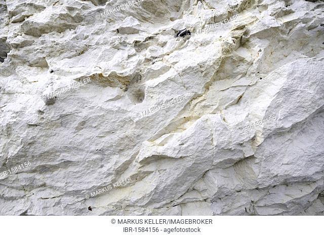 Chalk layer of a chalk cliff in the Nationalpark Jasmund national park, Ruegen island, Mecklenburg-Western Pomerania, Germany Europe
