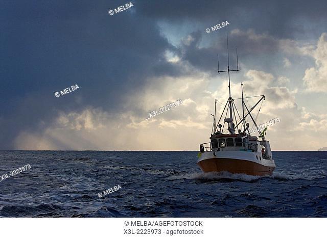 Codfish fishing ship. Lofoten islands. Norway