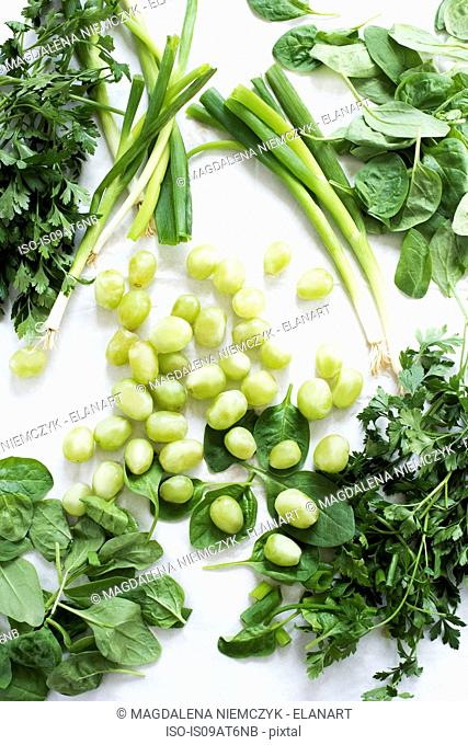 Still life of herbs, grapes and spring onions