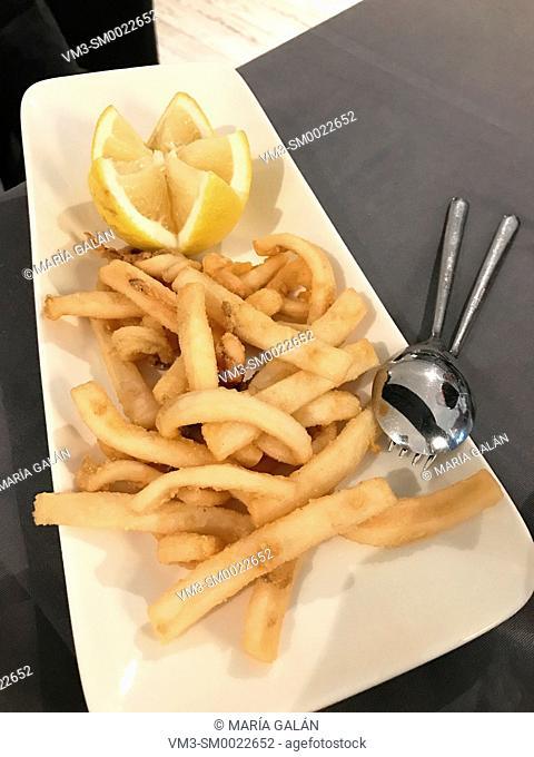 Fried squid serving. Spain