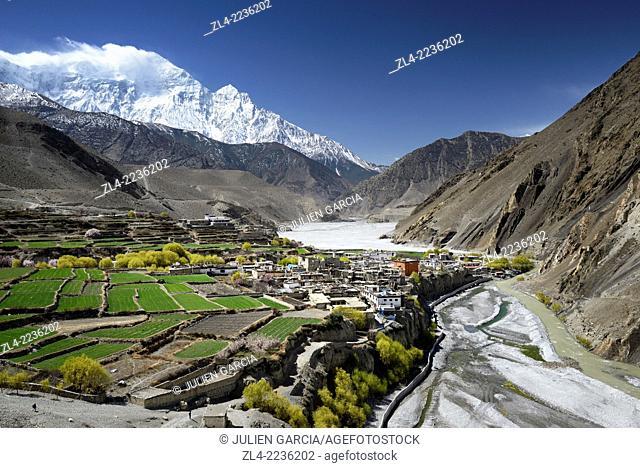 The village of Kagbeni (2800m) surrounded by fields in the valley of the Kali Gandaki river, Nilgiri peak (7061m). Nepal, Gandaki