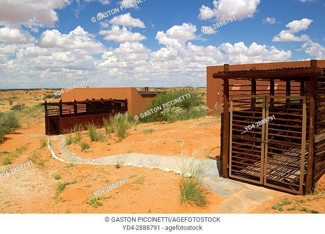 Kieliekrankie Wilderness Camp, Kgalagadi Transfrontier Park, Kalahari desert, South Africa