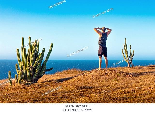 Man standing on mountain top, looking at view, rear view, Jericoacoara National Park, Ceara, Brazil