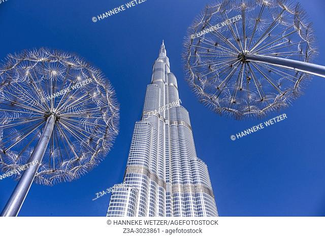 Dandelion lights in front of the Burj Khalifa in Dubai, the highest building of the world