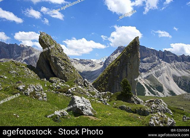 Malga-Alm below the Geislerspitzen, Seceda, Val Gardena, Dolomites, Trentino South Tyrol, Italy, Europe