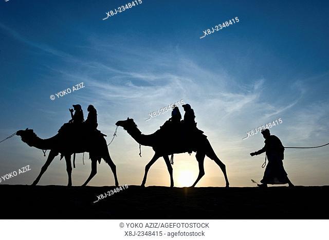 India, Rajasthan, Jaisalmer, Camel Ride, sunset