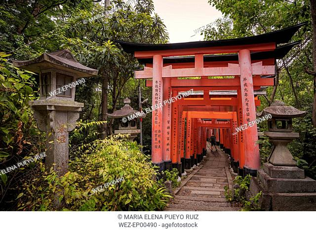 Japan, Kyoto, Fushimi Inari-Taisha temple, Torii Gate, Tourist with backpack