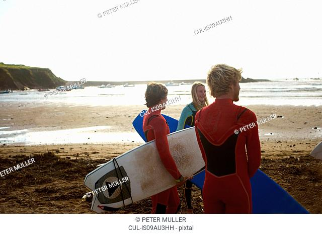 Group of surfers standing on beach, holding surfboards, rear view