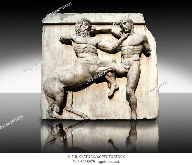 Sculpture of Lapiths and Centaurs battling from the south east corner Metope of the Parthenon on the Acropolis of Athens no XXXII