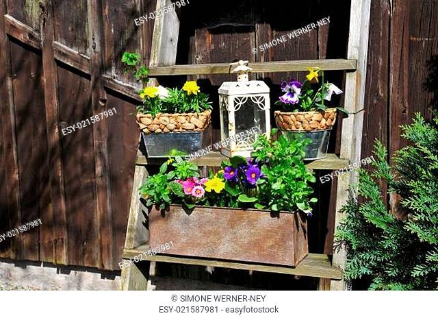 Garten Dekoration Blumen