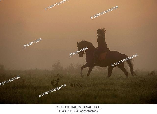 woman rides Hanoverian