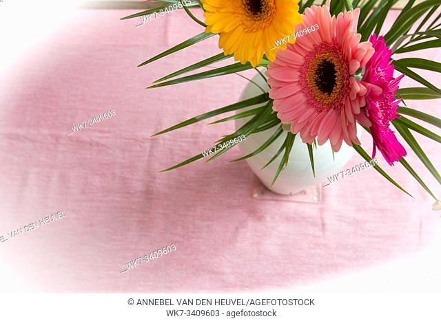 Bouquet of pink daisies in white vase on pink background, colorful flowers view above beauty