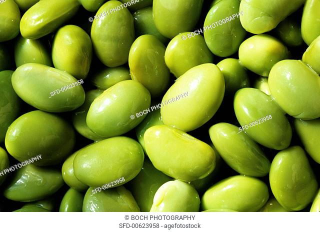 Soya beans (full-frame)