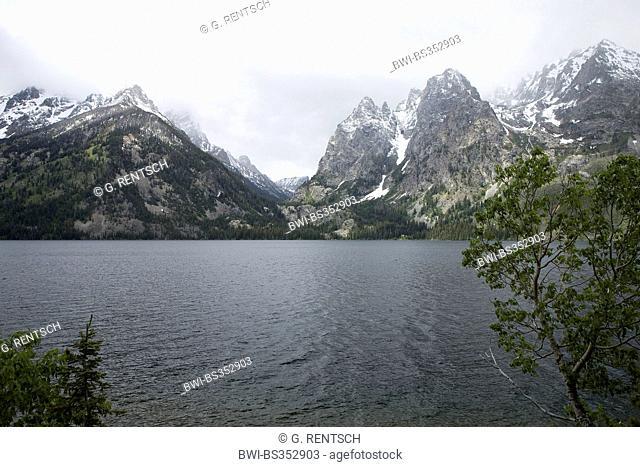 view over Lake Jenny, Grand Teton Nationalpark, USA, Wyoming, Grand Teton National Park