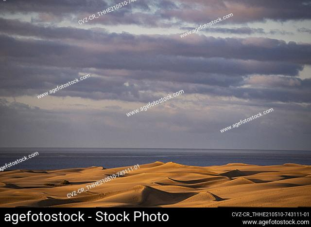 the sand dunes of Maspalomas on the Canary Islands
