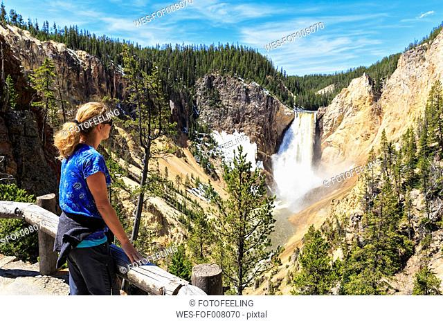 USA, Wyoming, Yellowstone National Park, Yellowstone River, Grand Canyon of the Yellowstone, Tourist looking to Lower Yellowstone Falls