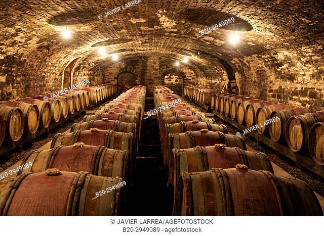 Wine cellar, Domaine François et René Leclerc, Gevrey-Chambertin, Côte de Nuits, Côte d'Or, Burgundy Region, Bourgogne, France, Europe