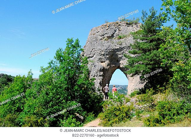 Chaos of Roquesaltes, rochers de Roquesaltes, rock formations, Causse Noir area, around Millau, Aveyron, Midi-Pyrénées, France