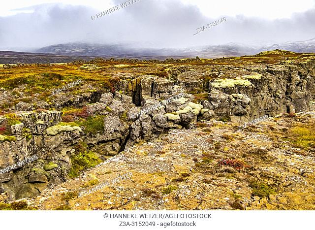 Nature of Þingvellir National Park, Southwest Iceland