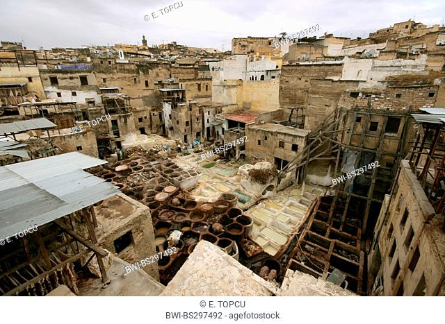 tanner district in historical old town, Morocco, Fes