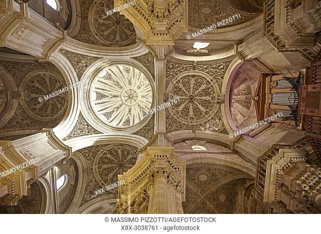 Inner view of the Cathedral of the Incarnation, Granada, Spain