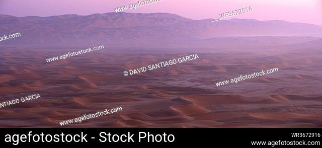 United Arab Emirates, Emirate of Abu Dhabi, Sand dunes at Quarter desert with mist at sunrise