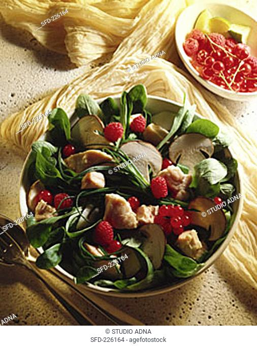 Herb salad with mushrooms, berries and tuna