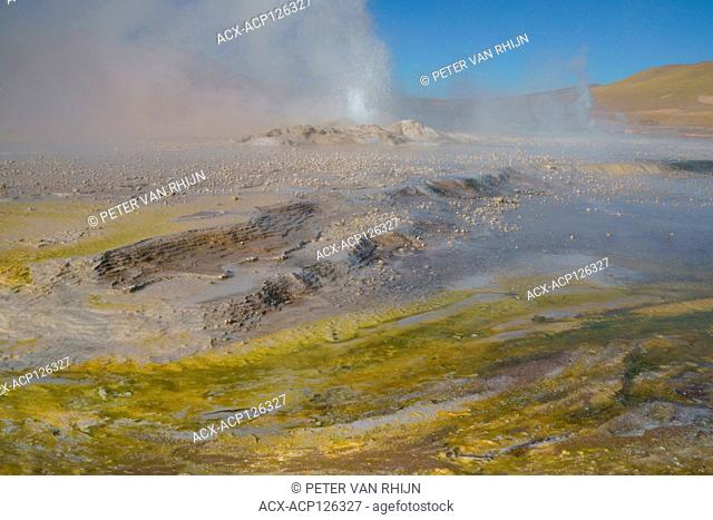 Colourful bacterial growth in the foreground of an El Tatio hot spring in the Andes Moutains at 14,000 ft elevation. Chile, South America
