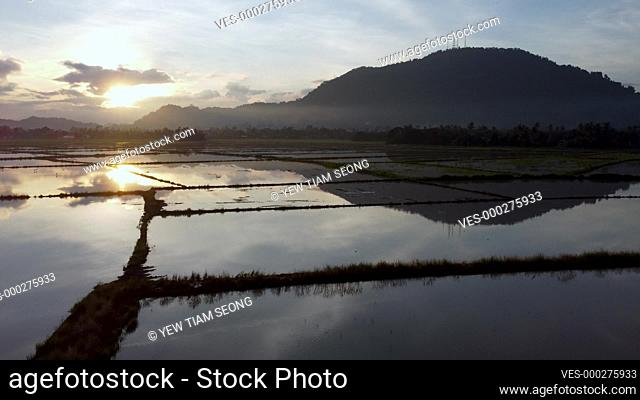 Sunrise over flood paddy field in aerial view