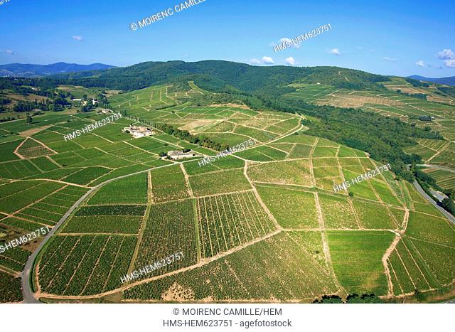 France, Rhone, Beaujolais, around Mont Brouilly, vine aerial view