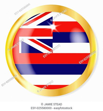 Hawaii state flag button with a gold metal circular border over a white background