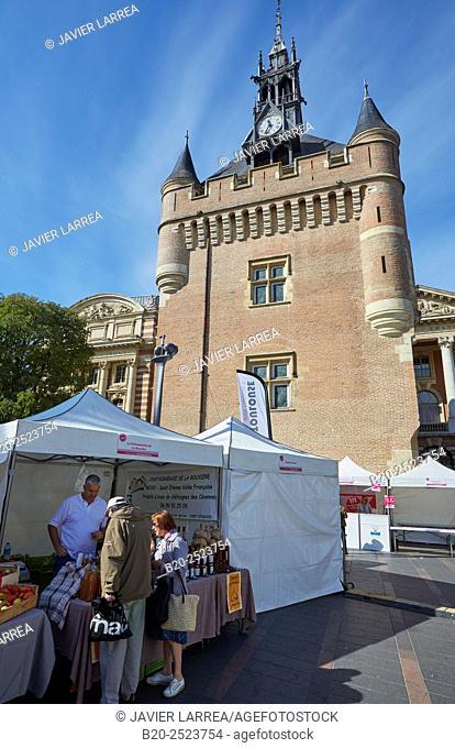 Donjon du Capitole, Toulouse, Haute Garonne, Midi-Pyrenees, France
