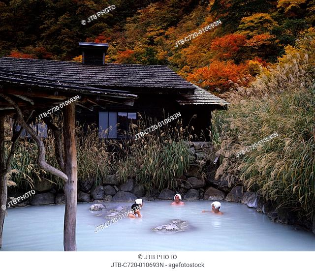 Concept, Open Air Bath, Bathing, Red Leaves, Towel, Japanese pampas grass, Tsurunoyu Onsen, Nyuto Onsenkyo, Autumn, Tazawako, Akita, Japan