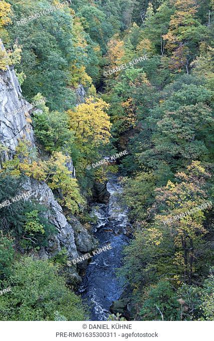 Bode valley Bodetal, Harz District, Harz, Saxony-Anhalt, Germany / Bodetal, Landkreis Harz, Harz, Sachsen-Anhalt, Deutschland
