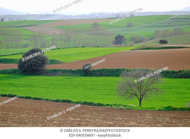 Greenfield and hill in Mollet del Valles in Barcelona province in Catalonia Spain