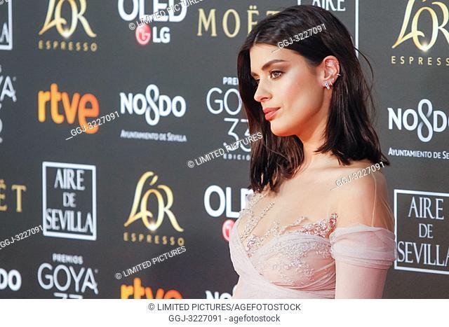 Dulceida attends the Spanish Cinema awards Goya 33rd edition at FIBE attends 33rd Goya Cinema Awards 2019 at Palacio de Congresos y Exposiciones FIBES on...