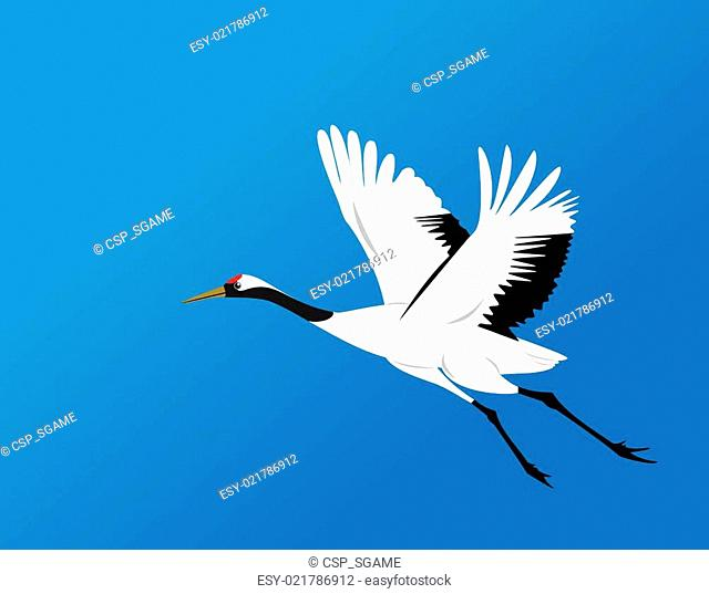 chinese red-crowned crane fly