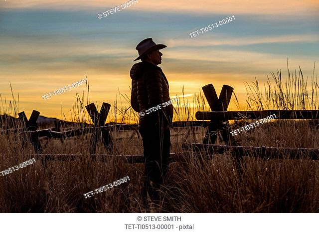 Silhouette of farmer at sunset