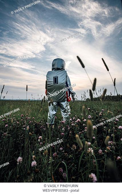 Spaceman exploring nature, standing in meadow, looking at sky