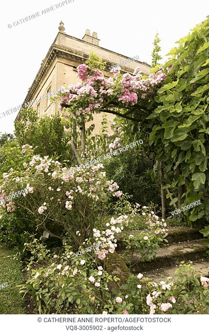 Archway of miniature pink roses cascading down the lichen covered steps of Frampton Court gardens on a lazy, hazy day in Summer, the Cotswolds, England