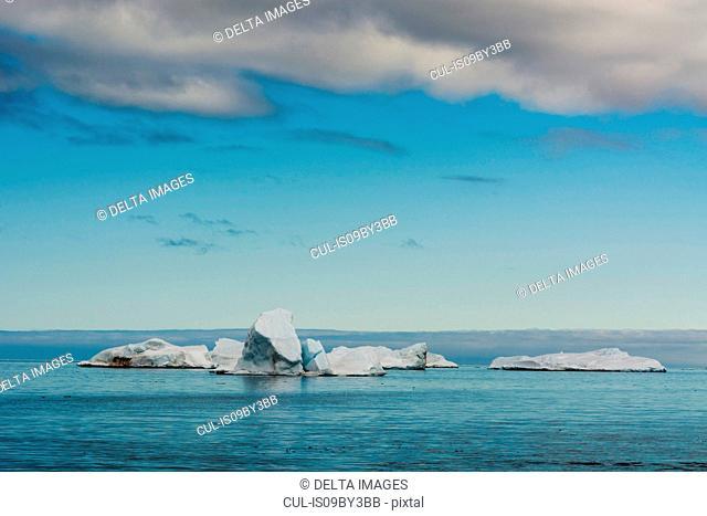 Blue seascape with icebergs, Vibebukta, Austfonna, Nordaustlandet, Svalbard, Norway