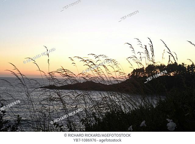 Sunset on the Oregon Coast. Oregon, Usa