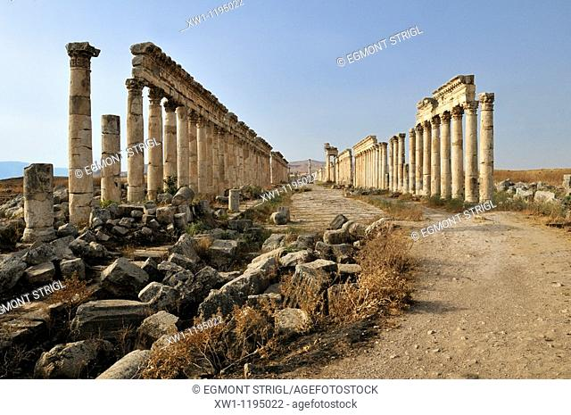 ruins at the roman archeological site of Apameia, Apamea, Qalaat al Mudiq, Syria, Middle East, West Asia