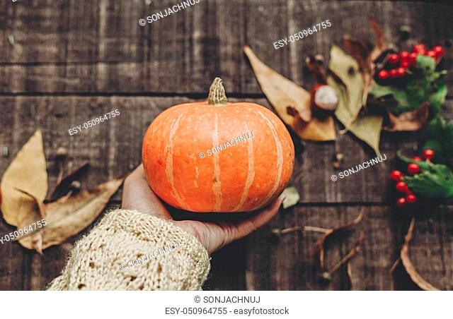hand in sweater holding pumpkin with leaves and berries on rustic wooden background, top view. space for text. thanksgiving or halloween concept greeting card